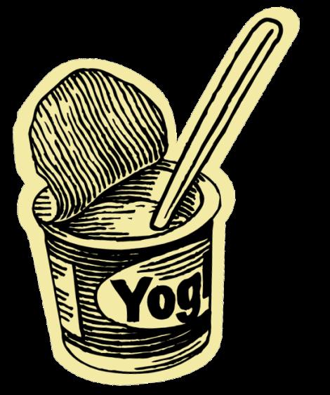 Yogurt- Fresh & Creamy Cooked Yogurt